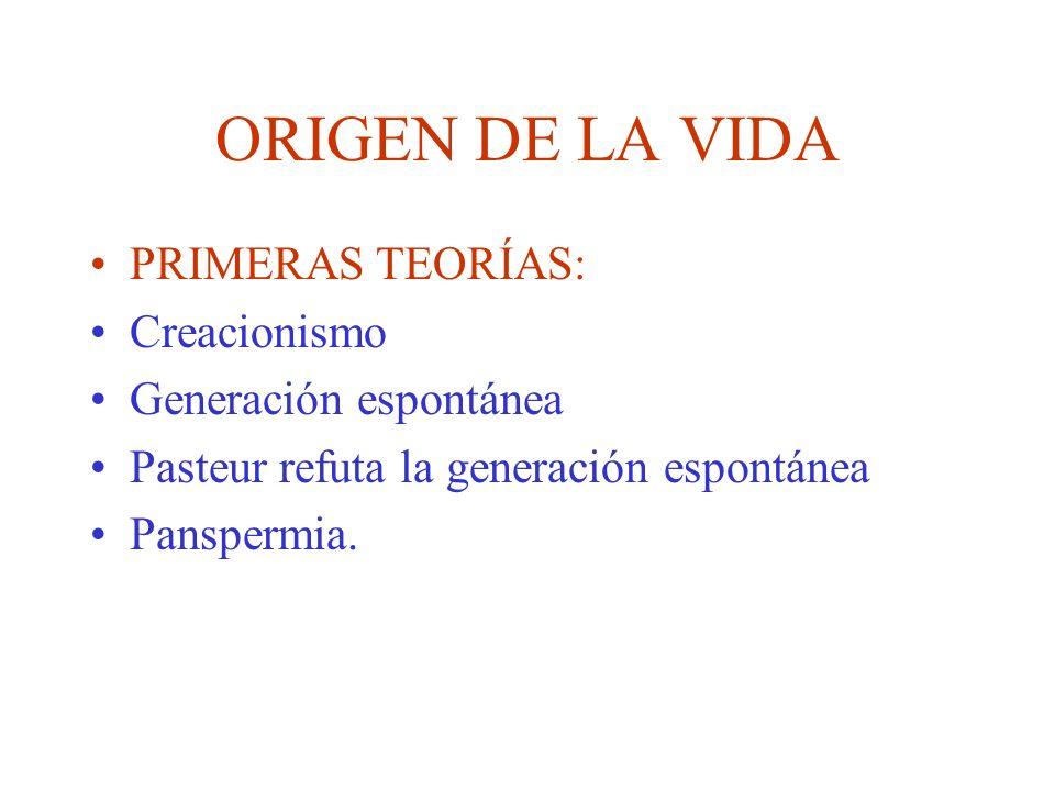 ORIGEN DE LA VIDA PRIMERAS TEORÍAS: Creacionismo Generación espontánea