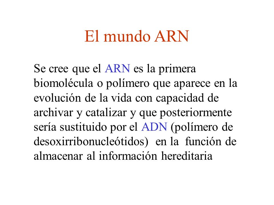 El mundo ARN