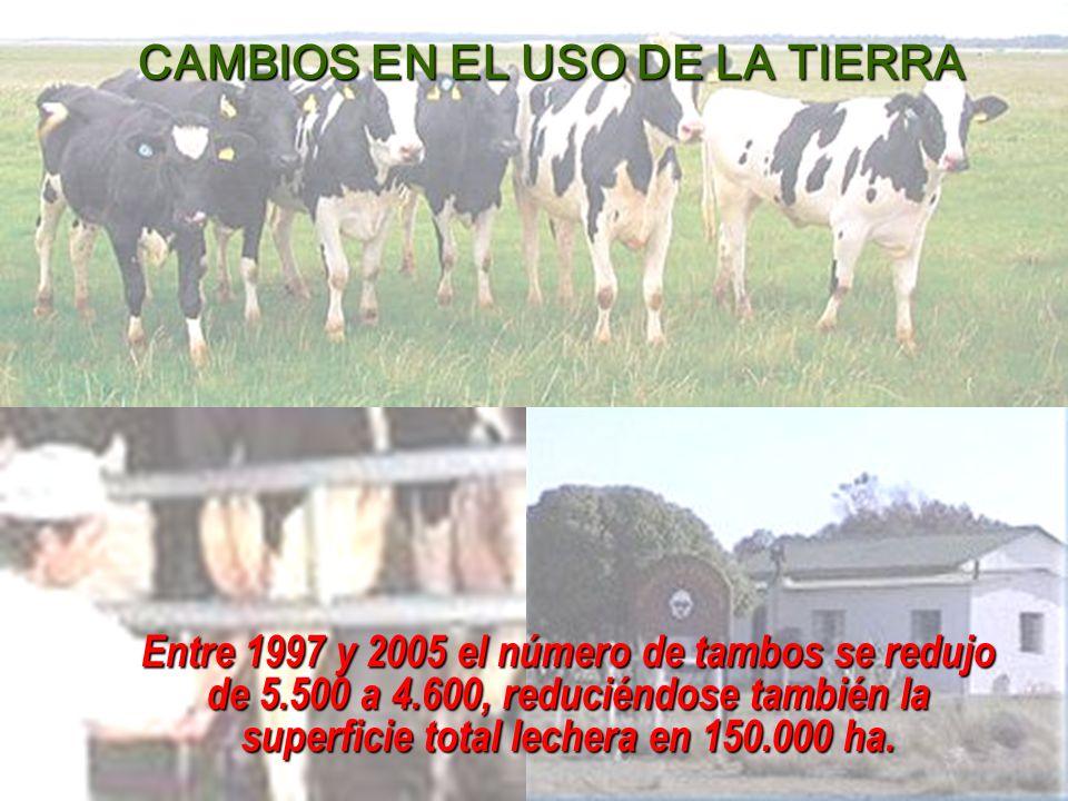 CAMBIOS EN EL USO DE LA TIERRA
