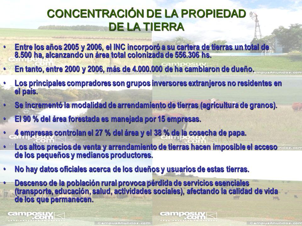 CONCENTRACIÓN DE LA PROPIEDAD DE LA TIERRA