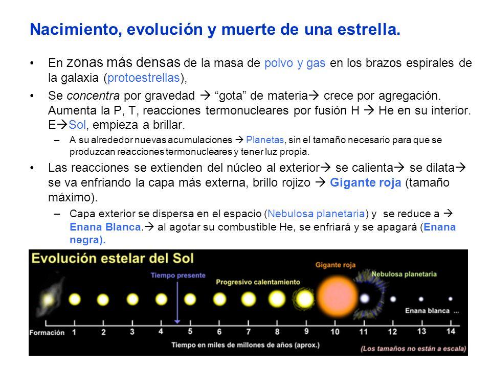 Nacimiento, evolución y muerte de una estrella.