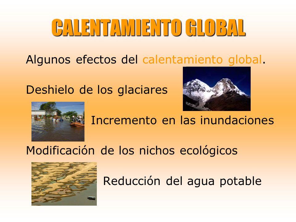 CALENTAMIENTO GLOBAL Algunos efectos del calentamiento global.