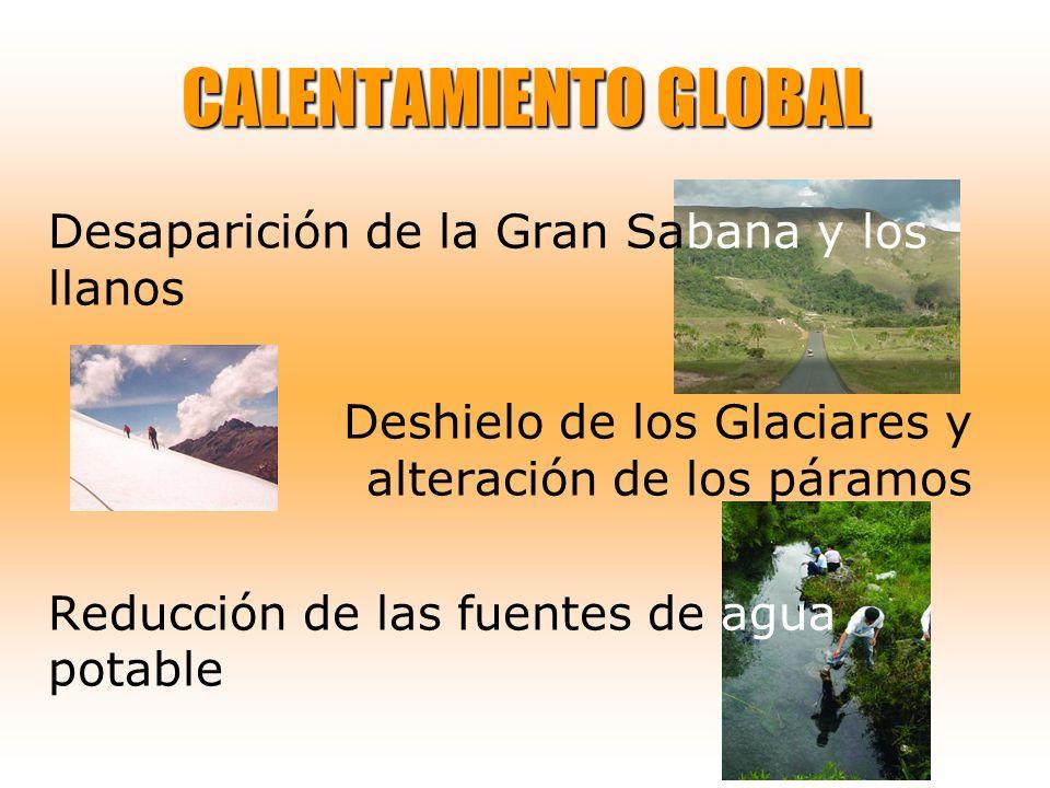 CALENTAMIENTO GLOBAL Desaparición de la Gran Sabana y los llanos