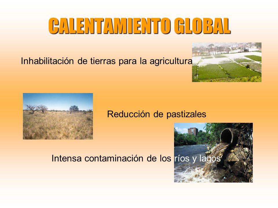 CALENTAMIENTO GLOBAL Inhabilitación de tierras para la agricultura