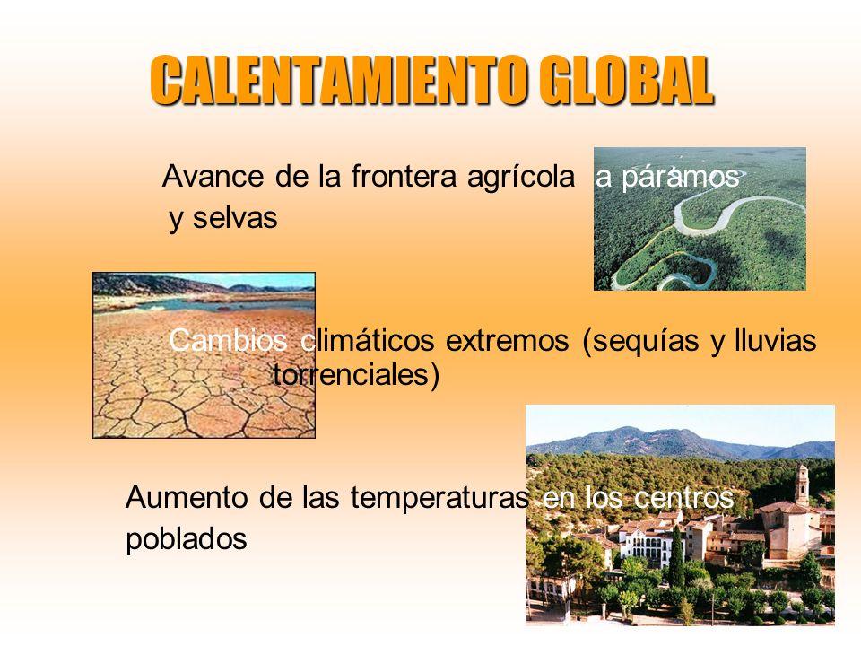 CALENTAMIENTO GLOBAL Avance de la frontera agrícola a páramos y selvas