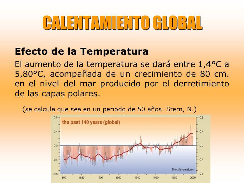 CALENTAMIENTO GLOBAL Efecto de la Temperatura.