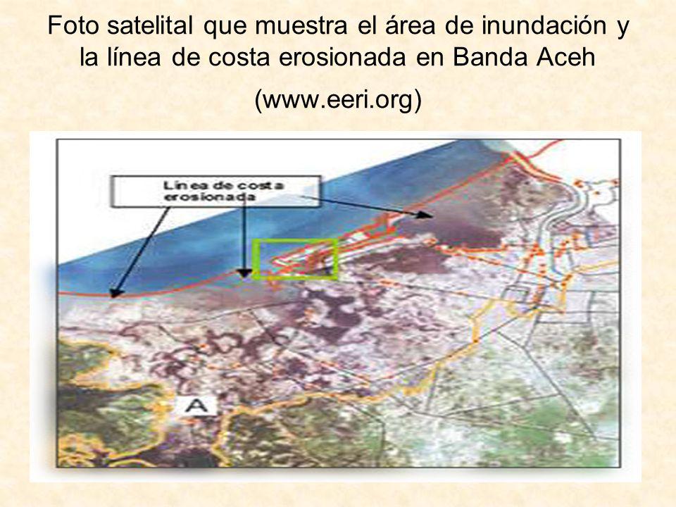 Foto satelital que muestra el área de inundación y la línea de costa erosionada en Banda Aceh (www.eeri.org)