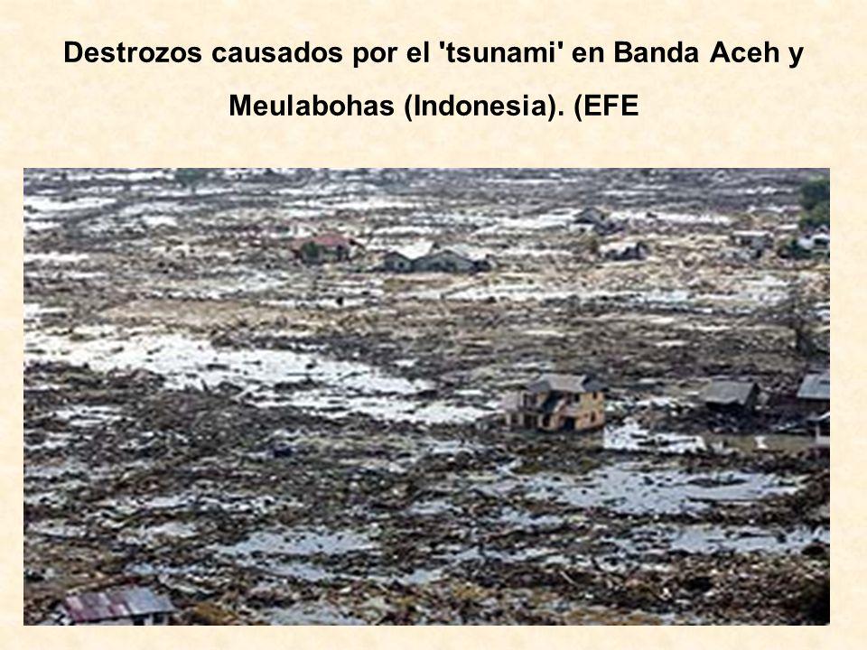 Destrozos causados por el tsunami en Banda Aceh y Meulabohas (Indonesia). (EFE