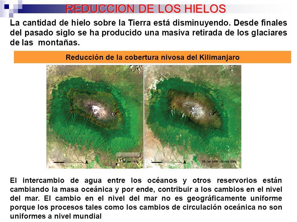 Oficina Nacinal de Desarrollo Limpio - MARENA. 08/10/04