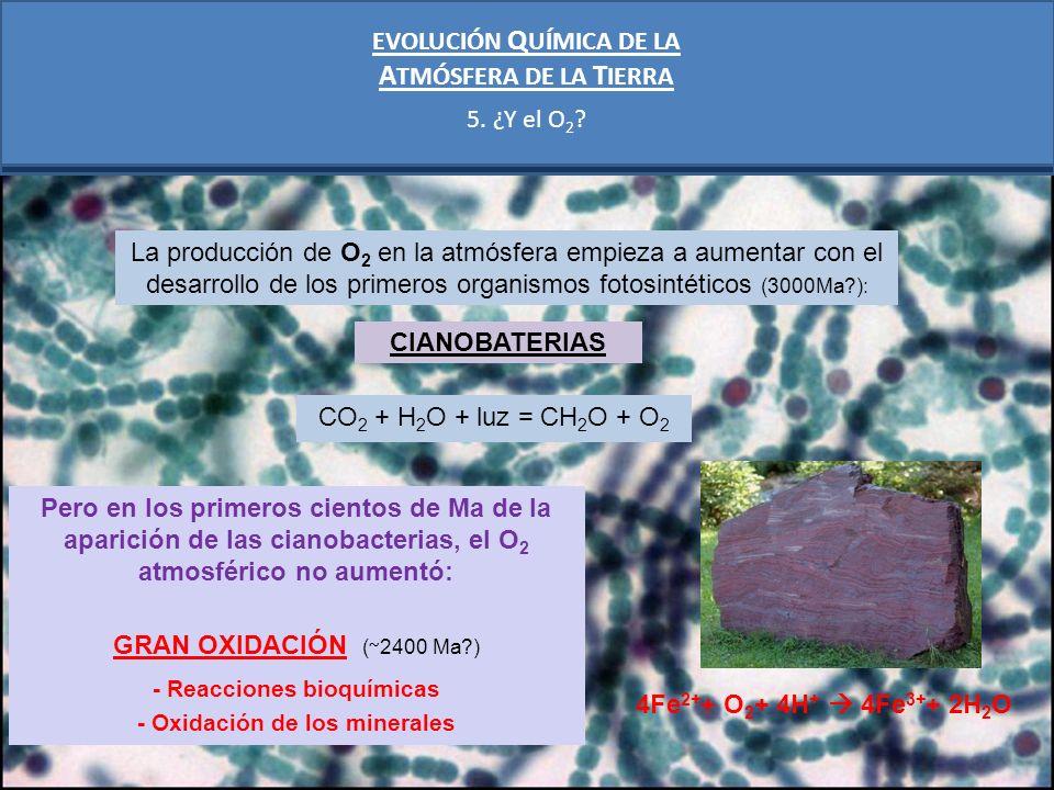 ATMÓSFERA DE LA TIERRA EVOLUCIÓN QUÍMICA DE LA 5. ¿Y el O2