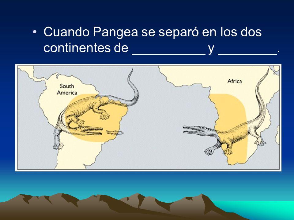 Cuando Pangea se separó en los dos continentes de __________ y ________.
