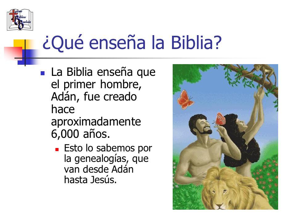 ¿Qué enseña la Biblia La Biblia enseña que el primer hombre, Adán, fue creado hace aproximadamente 6,000 años.