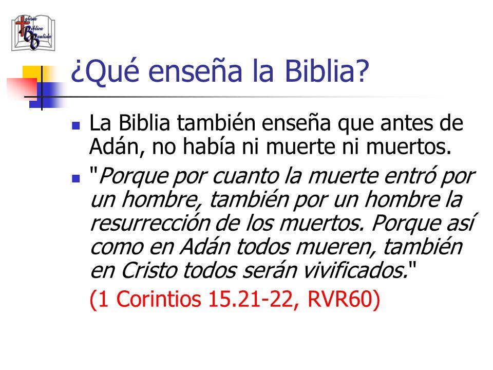 ¿Qué enseña la Biblia La Biblia también enseña que antes de Adán, no había ni muerte ni muertos.