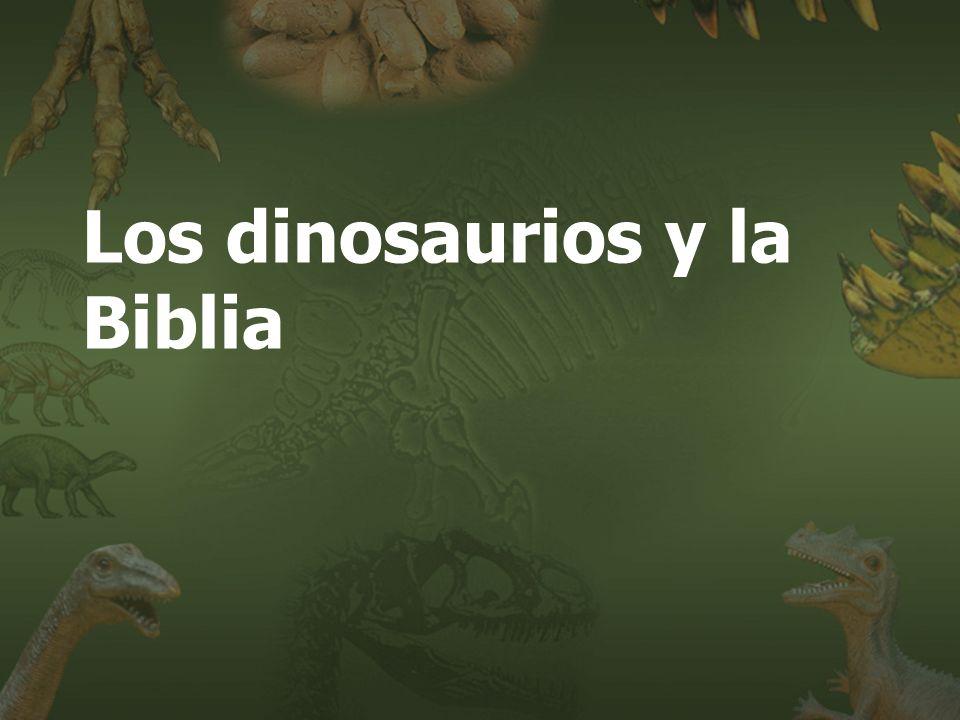 Los dinosaurios y la Biblia