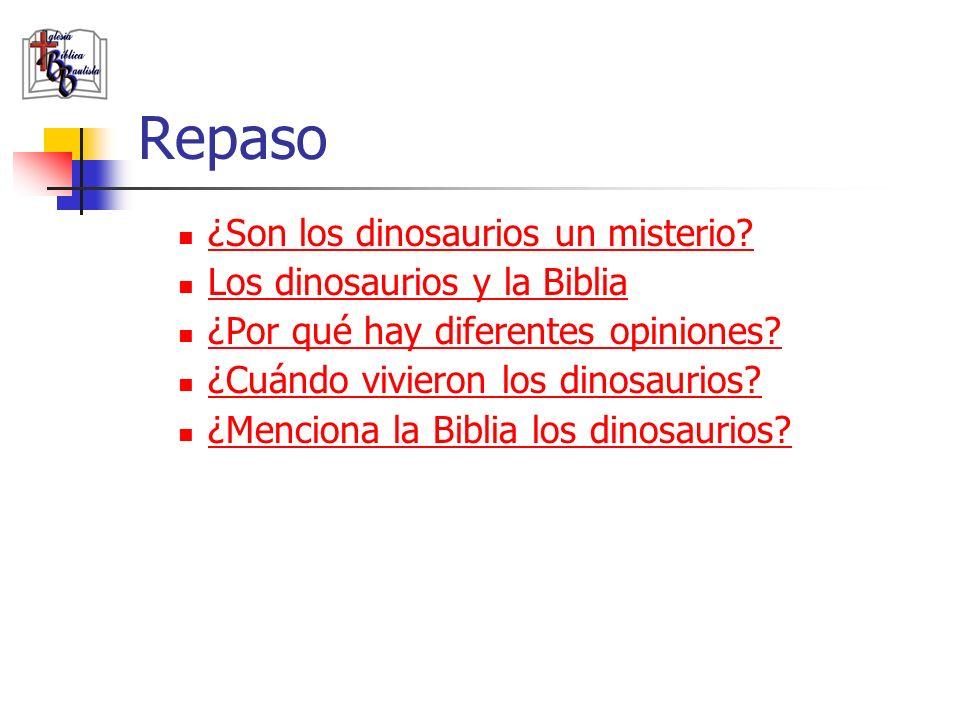 Repaso ¿Son los dinosaurios un misterio Los dinosaurios y la Biblia