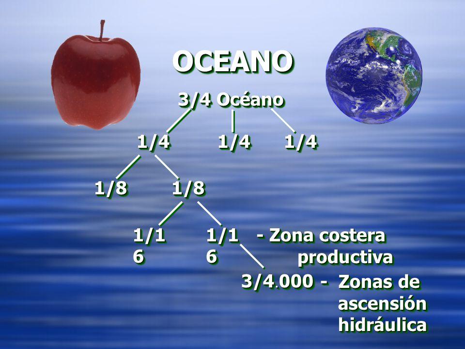 OCEANO 3/4 Océano 1/4 1/4 1/4 1/8 1/8 1/16 1/16