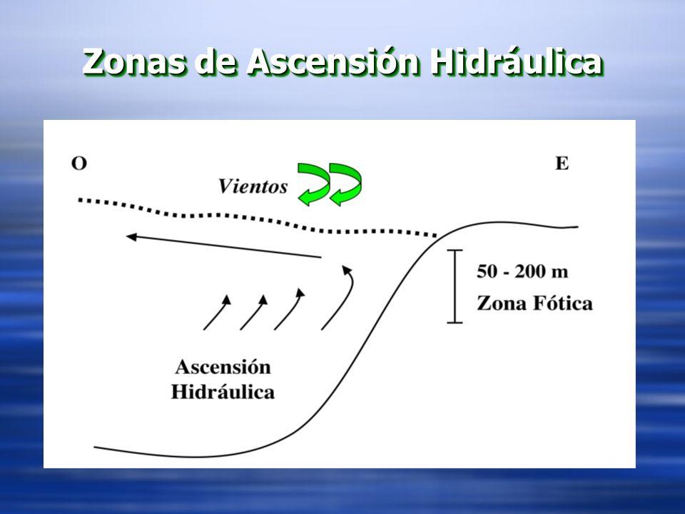 Zonas de Ascensión Hidráulica