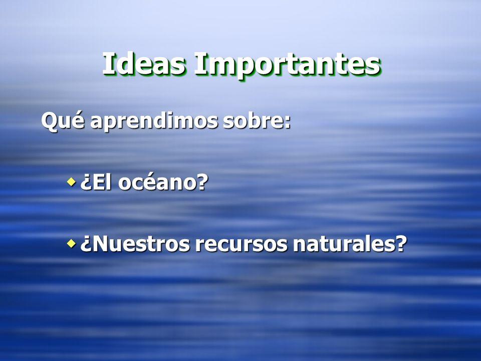 Ideas Importantes Qué aprendimos sobre: ¿El océano