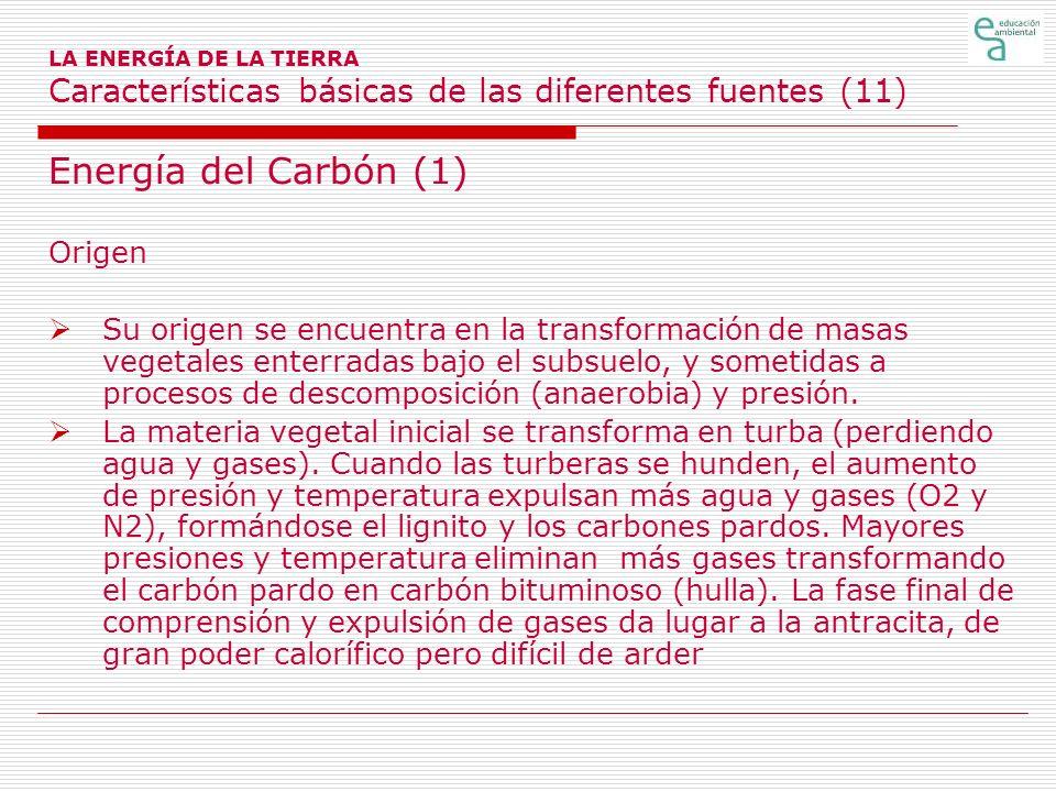 Energía del Carbón (1) Origen