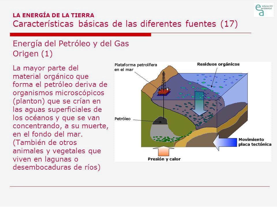 Energía del Petróleo y del Gas Origen (1)