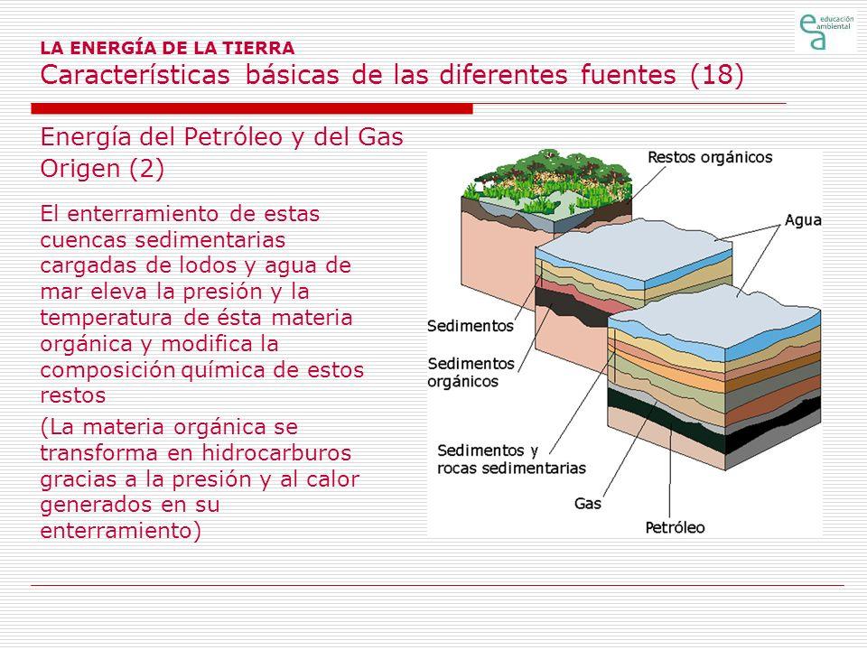 Energía del Petróleo y del Gas Origen (2)