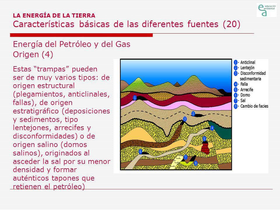 Energía del Petróleo y del Gas Origen (4)