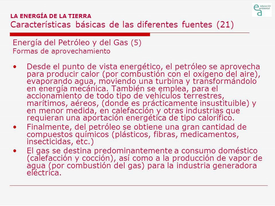 Energía del Petróleo y del Gas (5)