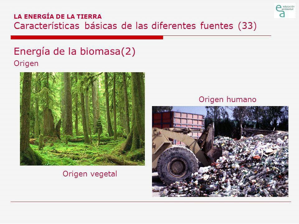 Energía de la biomasa(2)