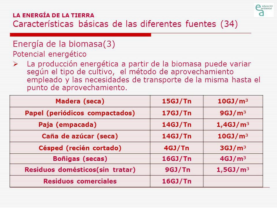 Energía de la biomasa(3)