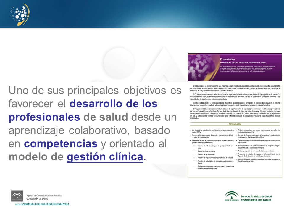 Uno de sus principales objetivos es favorecer el desarrollo de los profesionales de salud desde un aprendizaje colaborativo, basado en competencias y orientado al modelo de gestión clínica.