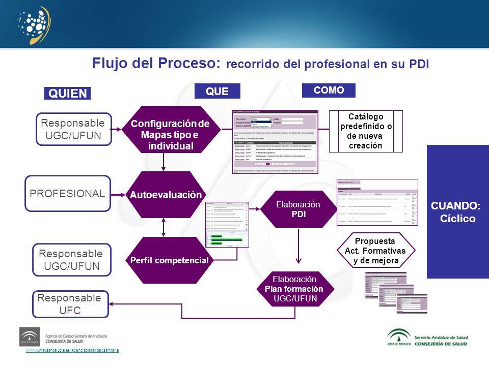 Flujo del Proceso: recorrido del profesional en su PDI
