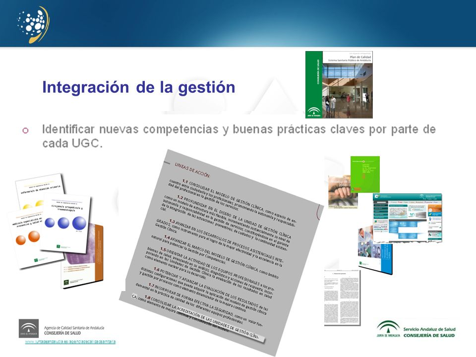 Integración de la gestión