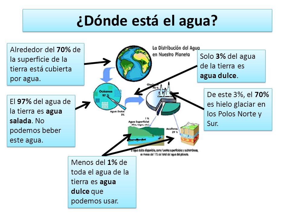 ¿Dónde está el agua Alrededor del 70% de la superficie de la tierra está cubierta por agua. Solo 3% del agua de la tierra es agua dulce.