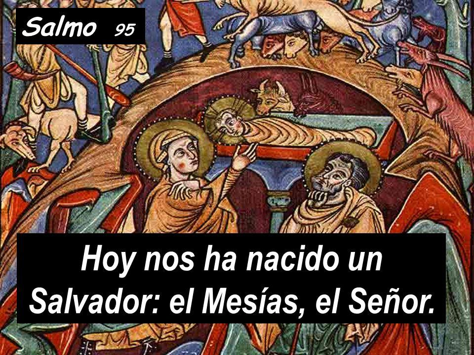 Hoy nos ha nacido un Salvador: el Mesías, el Señor.