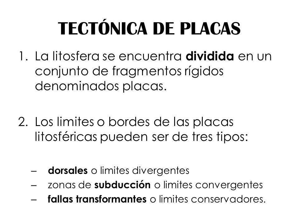 TECTÓNICA DE PLACAS La litosfera se encuentra dividida en un conjunto de fragmentos rígidos denominados placas.