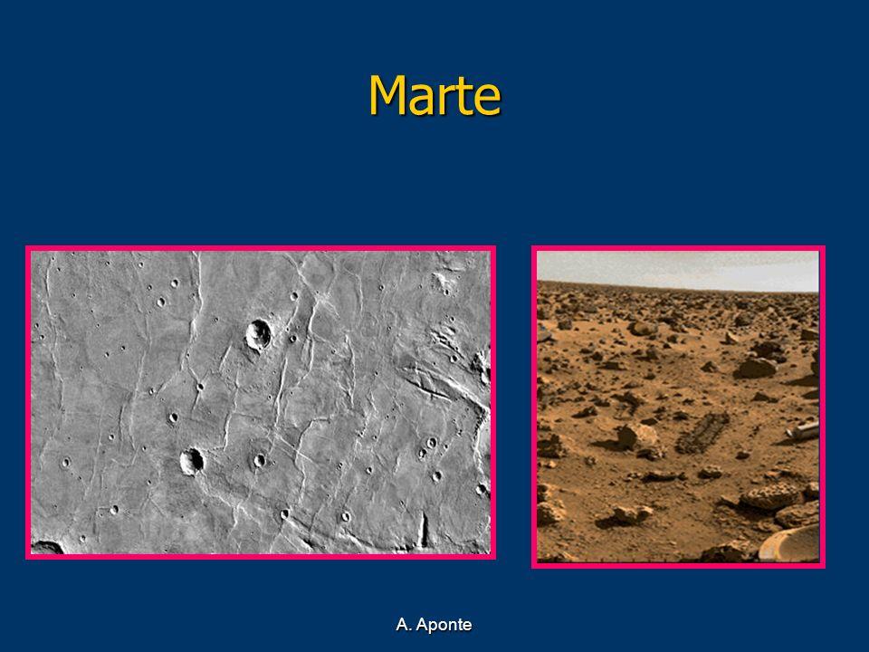Marte A. Aponte