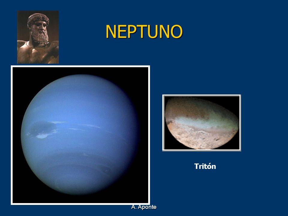 NEPTUNO Tritón A. Aponte