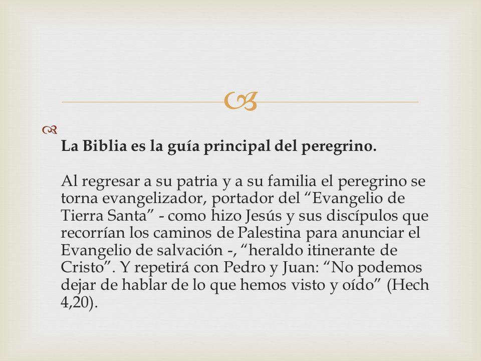 La Biblia es la guía principal del peregrino
