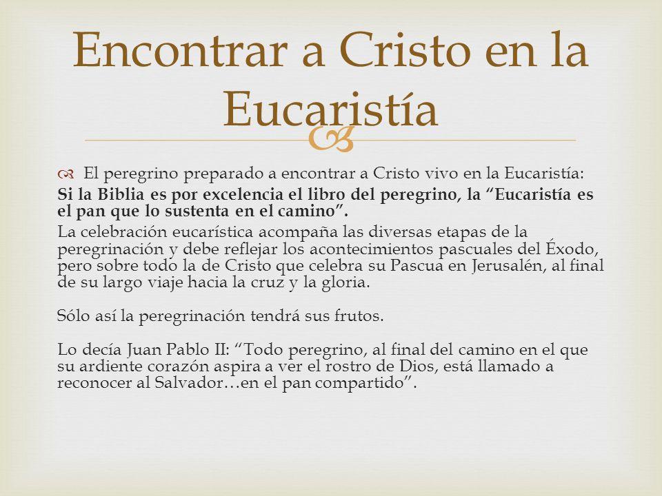 Encontrar a Cristo en la Eucaristía