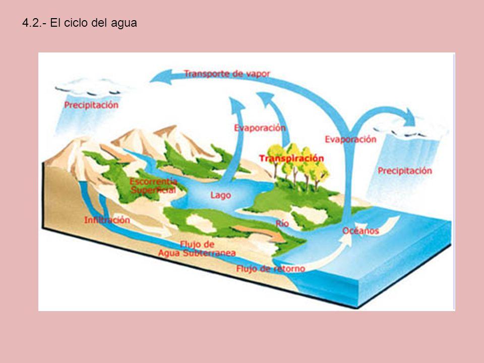 4.2.- El ciclo del agua