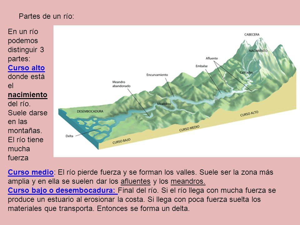 Partes de un río: En un río podemos distinguir 3 partes: Curso alto donde está el nacimiento del río. Suele darse en las montañas.