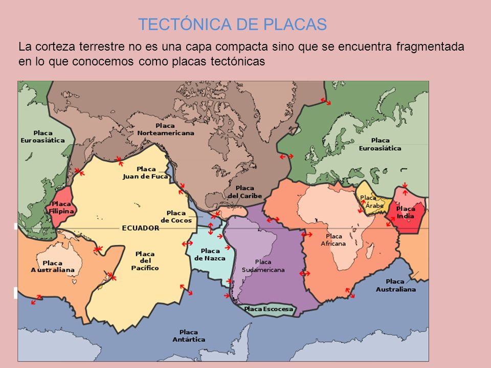 TECTÓNICA DE PLACAS La corteza terrestre no es una capa compacta sino que se encuentra fragmentada en lo que conocemos como placas tectónicas.