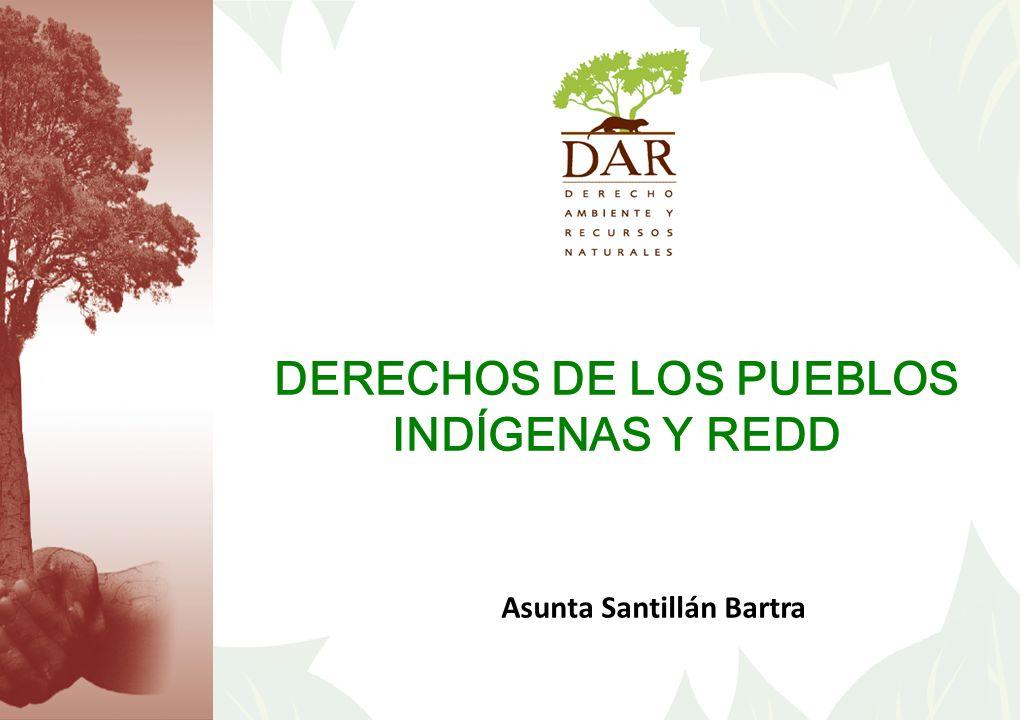 DERECHOS DE LOS PUEBLOS INDÍGENAS Y REDD