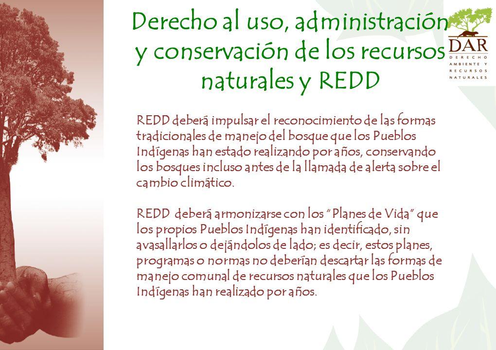 Derecho al uso, administración y conservación de los recursos naturales y REDD