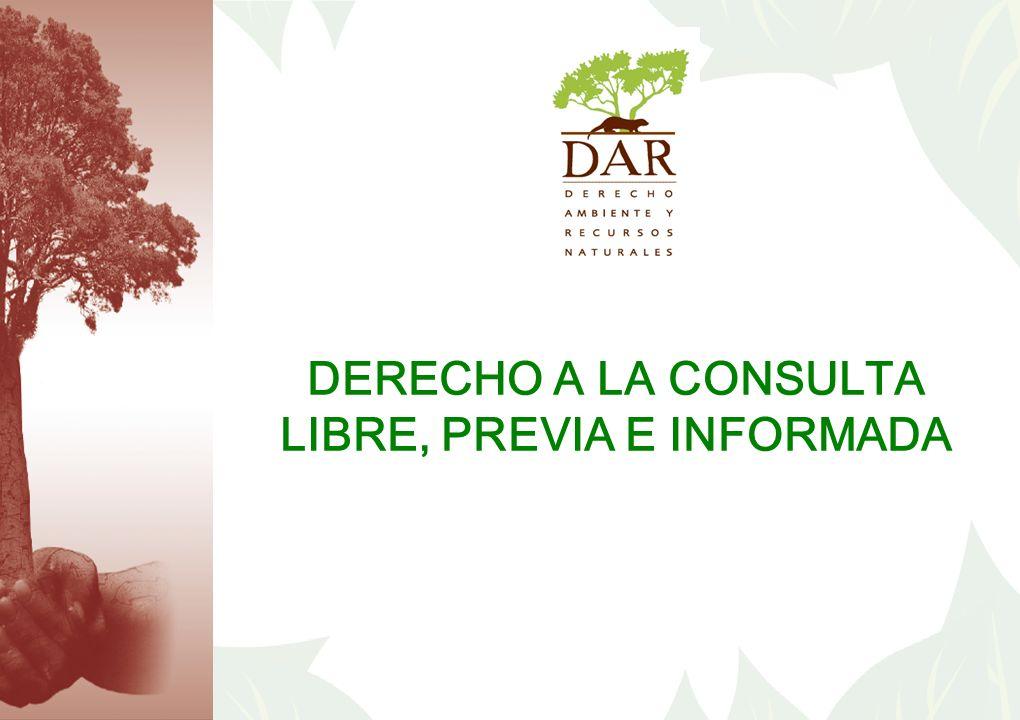 DERECHO A LA CONSULTA LIBRE, PREVIA E INFORMADA