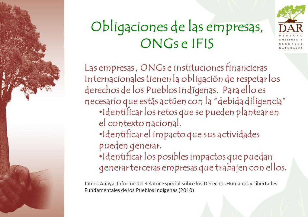 Obligaciones de las empresas, ONGs e IFIS