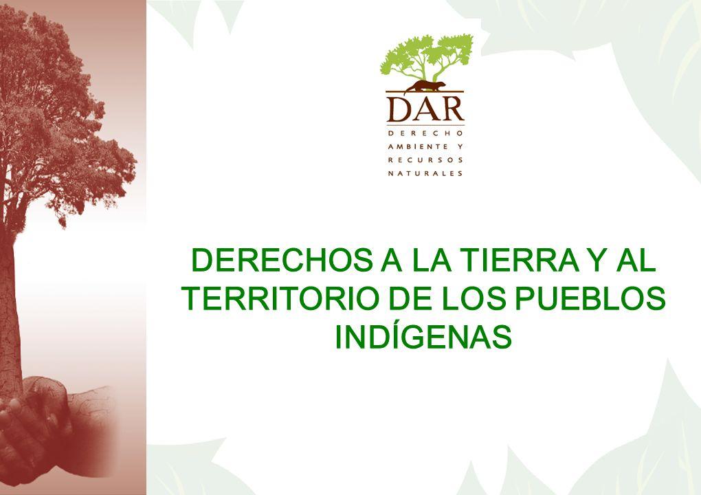 DERECHOS A LA TIERRA Y AL TERRITORIO DE LOS PUEBLOS INDÍGENAS
