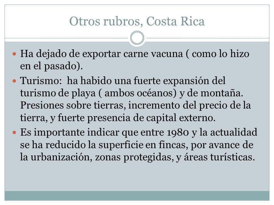 Otros rubros, Costa Rica