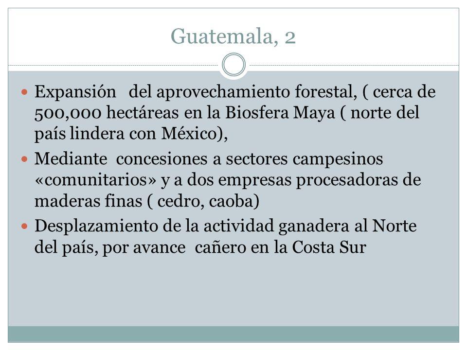 Guatemala, 2 Expansión del aprovechamiento forestal, ( cerca de 500,000 hectáreas en la Biosfera Maya ( norte del país lindera con México),