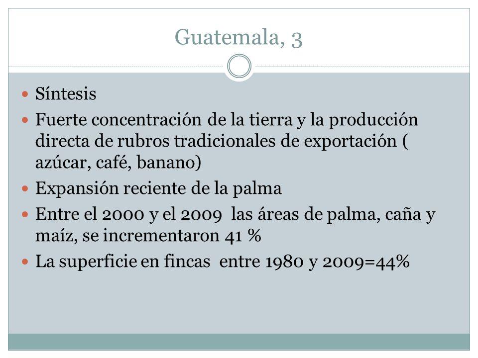 Guatemala, 3 Síntesis. Fuerte concentración de la tierra y la producción directa de rubros tradicionales de exportación ( azúcar, café, banano)
